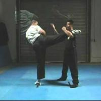 Counter Kick 3 demonstrate by Master Lijun Wang