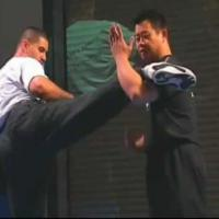Counter Kick 1 demonstrate by Master Lijun Wang