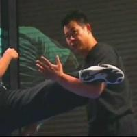 Counter Kick 2 demonstrate by Master Lijun Wang