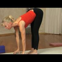"Yoga Beginners Part 1- 5  ""Foundational Poses"""