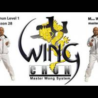 How to do Wing Chun Lesson 28: combo/ blocking straight punch and countering with a stomp kick