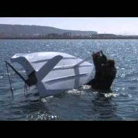 Learn to Sail: Chapter 11 - Capsize and Recovery