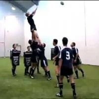 Rugby, The lineout