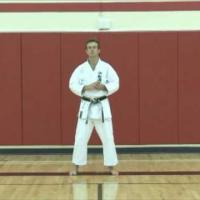 Karate Concepts: Commitment Required in your Training